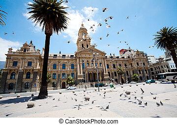 pombos, voar, prefeitura, de, cidade do cabo, áfrica sul
