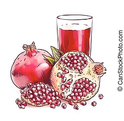 pomegranate., acuarela, imitation.