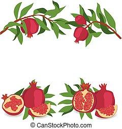 pomegranate., conjunto, de, pomegranates., vector,...