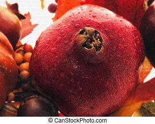 Pomegranate Still L