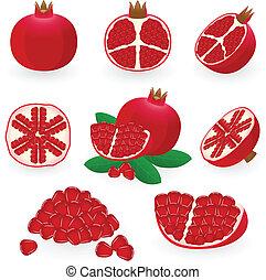 Pomegranate - Vector illustration of pomegranate