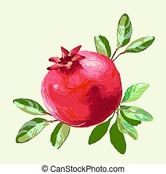Pomegranate with leaves fresh fruit drawing, Vector Illustration For Food Design.