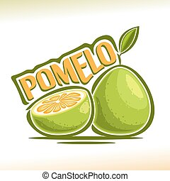 pomelo, logo, vecteur, fruit