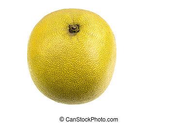 pomelo, zitrusfrucht, größten