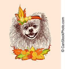 Pomeranian dog in the carnival outfit of autumn. A sketch ...