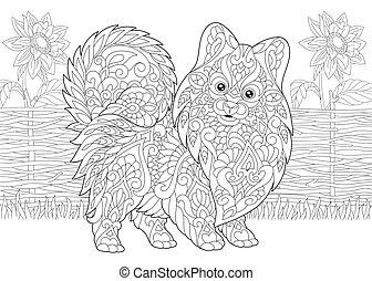 Pomeranian spitz and sunflowers - Pomeranian spitz, dog...