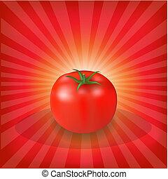 pomidor, sunburst, tło, czerwony