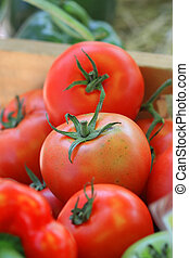 pomidor, zamknięcie, taca, do góry