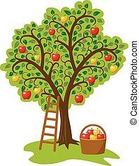 pomme, échelle, arbre, fruits, unique, vecteur, conception, panier