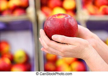 pomme, grand, peu profond, shop;, champ, profondeur, mains, girl, prise, rouges