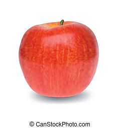 pomme, isolé, arrière-plan., vecteur, blanc rouge