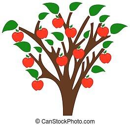 pomme, mûre