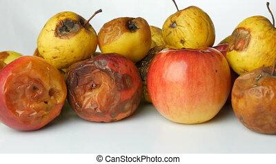 pomme, mûre, multicolore, arrière-plan., pourri, mûri, ...