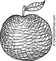 pomme, main, arrière-plan., vecteur, dessiné, blanc, gravé