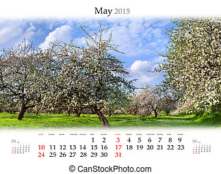 pomme, printemps, may., fleurir, calendrier, jardins, 2015.
