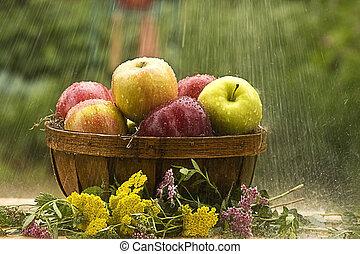 pommes, pluie