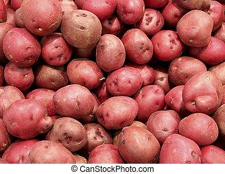pommes terre, arrière-plan rouge