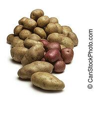 pommes terre, blanc, tas, isolé