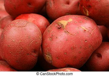pommes terre, haut, rouges, fin