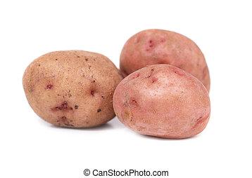 pommes terre, pile