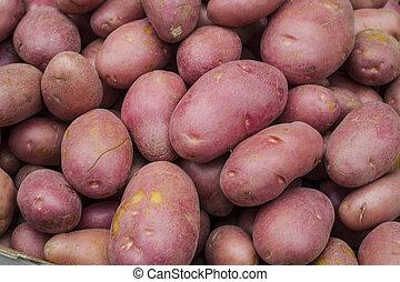 pommes terre rouges
