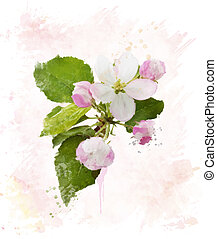 pommier, blossom.watercolor