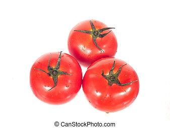 pomodoro, bianco, isolato, rosso