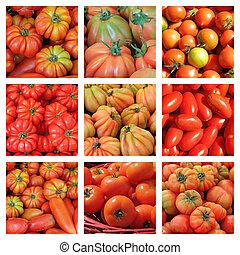 pomodoro, collage