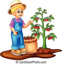 pomodoro, divertente, albero, cartone animato, giardiniere