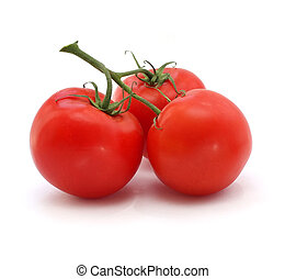 pomodoro, fondo, bianco