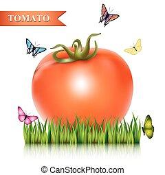 pomodoro, fresco, grass., rosso