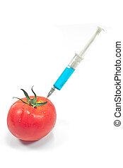 pomodoro, geneticamente, iniezione, modificato, isolato