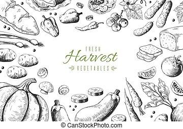 pomodoro, set, organico, giardino, schizzo, cibo, granaglie, ristorante, menu., carciofi, mano, fondo., vettore, sano, disegnato, carota, verdura
