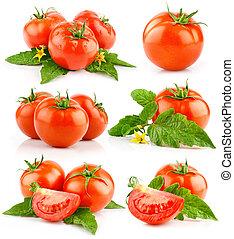 pomodoro, taglio, foglie, set, verdura verde, rosso