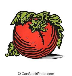 pomodoro, woodcut