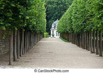 pompás, dekoratív, kert, -ban, sáncol, alatt, franciaország