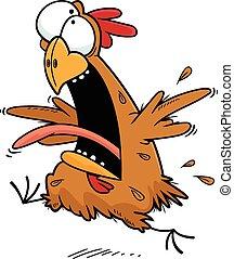 pomylony, rysunek, kurczak