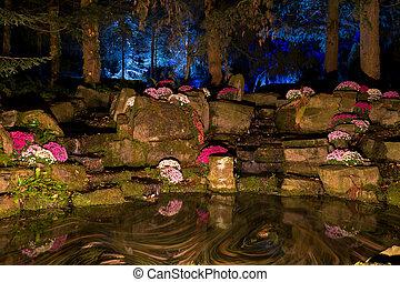 Pond by night