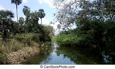 pond conventional exotic - pond in the South of India in...