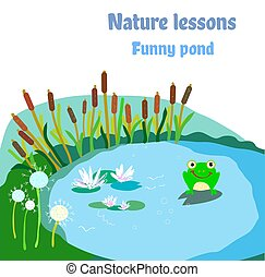 Pond, frog and flowers illustration