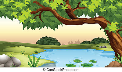 Pond - Illustration of a tree and a pond