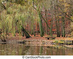 Pond in autumnal park