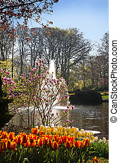 Pond in park with springflowers