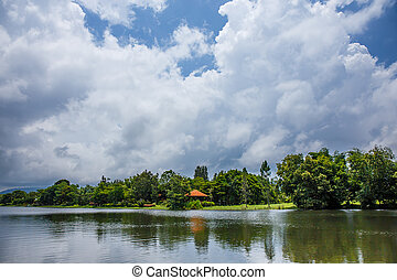 pond in the garden with the sky and white clouds on a bright day.