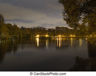 Pond in the park at night.