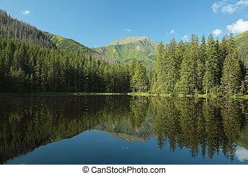 Pond in the Tatra Mountains, Poland