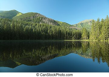 Pond in the Tatra Mountains
