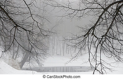Pond in the winter forest