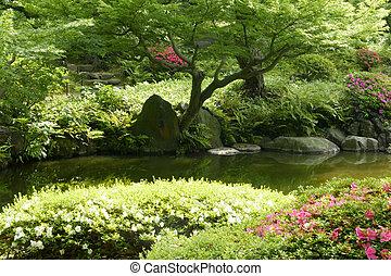 Pond, plant, tree, flower in Japanese zen garden