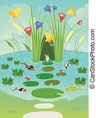 Pond Plants Animals Illustration